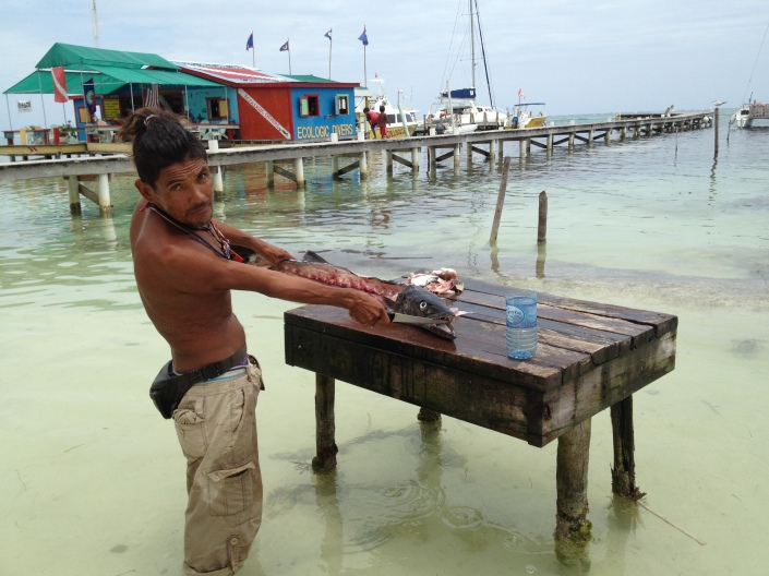 "Jesus Anthny cleans a fresh caught baracuda. Dinner for the family tonight, he said. He also cuts up coconuts for tourists to drink, for a slight charge. ""Very healthy for you"" he adds. What you don't see is the very large ""pet"" ray that swims up as soon as it hears water splashing around the cutting table. Scraps have conditioned it to know when the dinner bell rings."