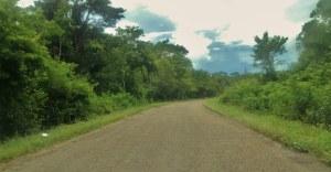 Heading north on the Hummingbird Highway.