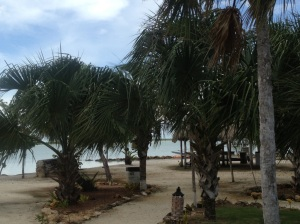 The view from our casita at Orchid Bay.