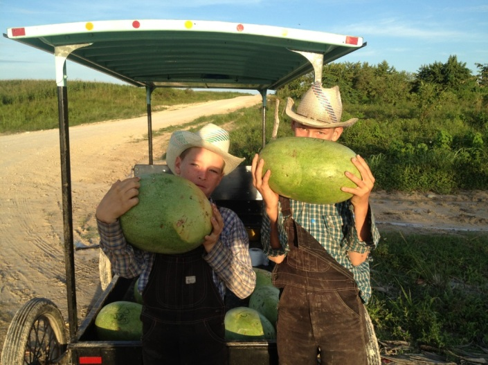 Couple of young Mennonite lads hawking watermelons in Corozal District last October.