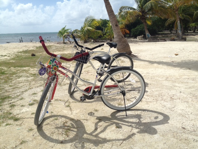 Due to high public demand, here is a photo of Rose's bike (foreground) and mine.  Those baskets have already come in handy for hauling groceries, computers, water.