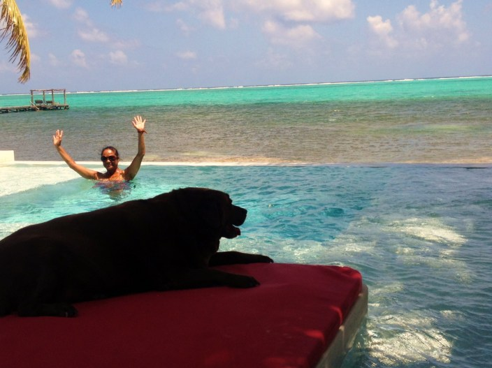 Rose cools off in the Rojo Beach Bar's pool as one of the local dog mascots looks on from a lounge.