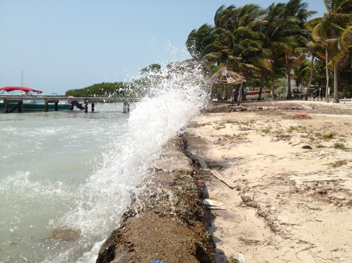 April winds and high surf beyond the reef are keeping the water level high around Ambergris Caye. There's even an occasional crashing wave on shore, like this one in the Boca del Rio neighborhood.