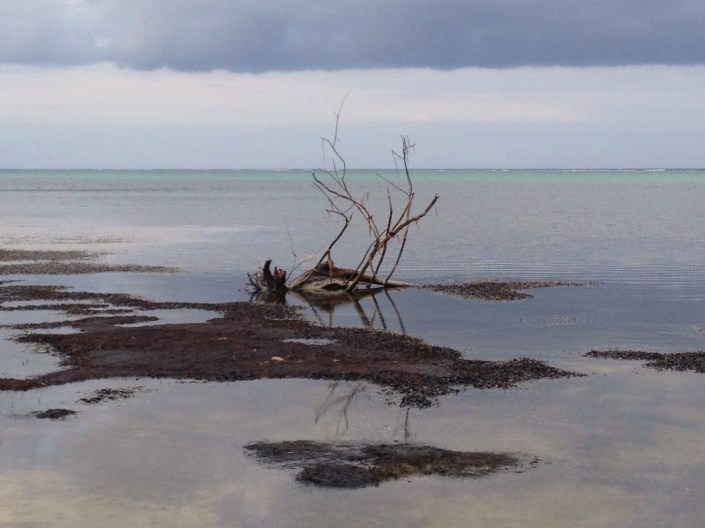 Facing east on a low tide at dusk on the Caribbean island of Ambergris Caye, Belize. Just a really different mood from the iridescent waters and brilliant blue skies of daytime Belize. What do you think? What kind of mood do these images put you in?