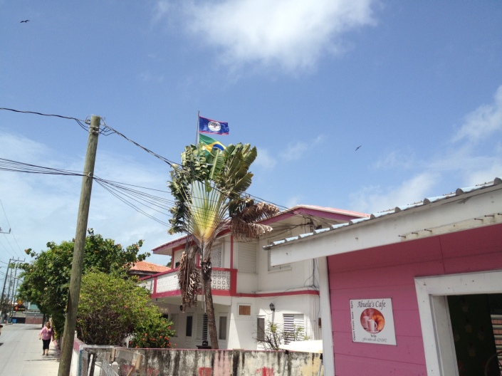 With World Cup in full swing, national pride is beginning to show in soccer jerseys and flags. The Brazil flag peeks over the top of the palm near Abuela's Deli, which has terrific pies, cakes and donuts as well as breakfast and lunch treats.