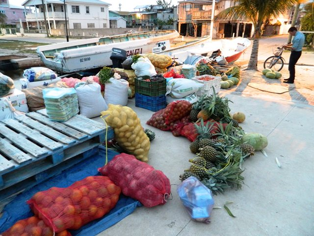 Tuesday's sunrise marketplace on the lagoon-side docks of San Pedro Town, Ambergris Caye, Belize. (Photo courtesy tacogirl.com)
