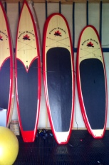 The selection of Beaver Boards for stand-up paddling at BIGSUP Belize.