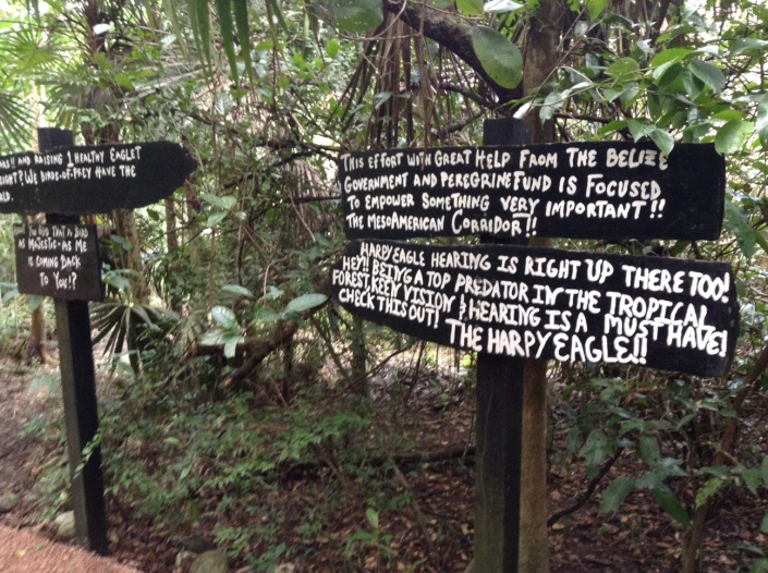 Belize Zoo signage offers the most fun you'll have reading anywhere. And it is informative.