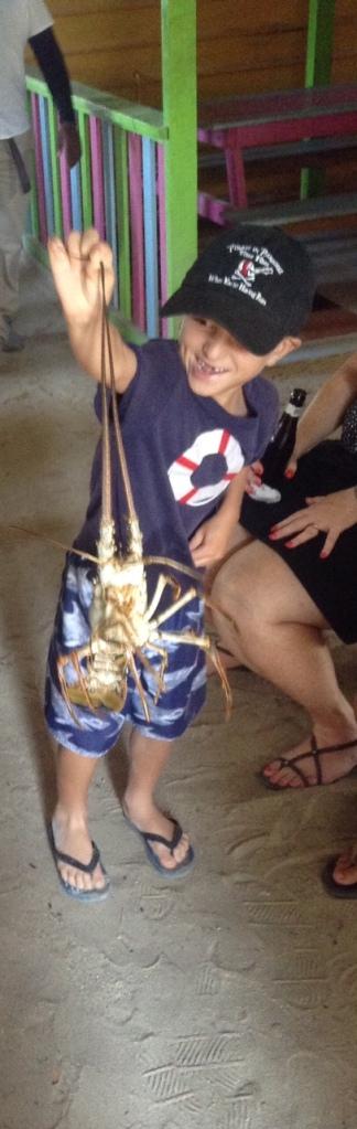 cc-lobsta-touch1