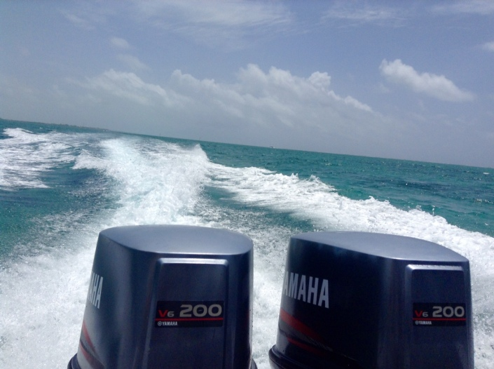 Twin Yamaha 200s get us from Ambergris Caye to neighboring Caye Caulker in almost no time at all.