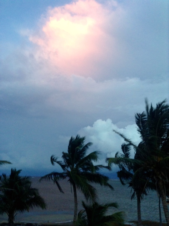 Last night, at dusk. Storm clouds tried valiantly to push in and dump their welcome moisture over our island. There were thunderous clashes to the east but our defenses -- what ever they were -- held.