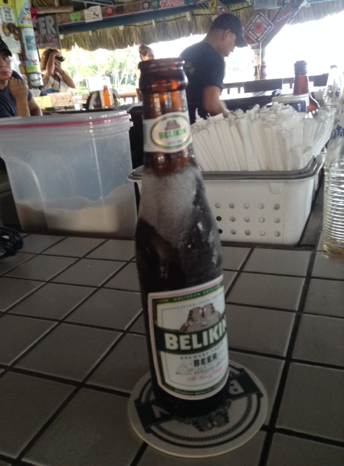 "If you are unexpectedly handed a Belikin beer encrusted in ice and you thinnk ""life is good,"" you might just make it as an expat."