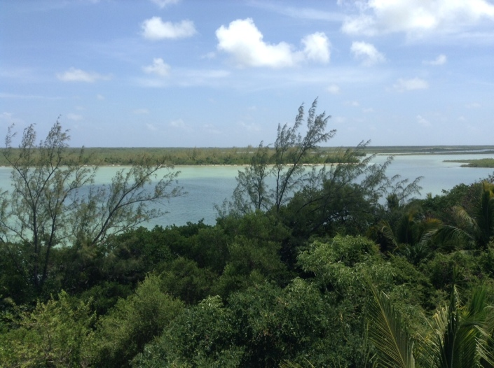 The view from atop the observation tower at Bacalar Chico Ranger Headquarters.