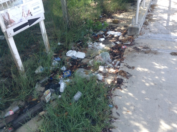 Another great contradiction: We trash the island we love so much. This gives you an idea of what we are up against. One of these trash piles is at the foot of the bridge in San Pedro.