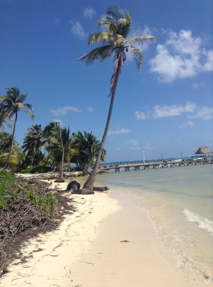 "On the best days, you can walk along the coast of Ambergris Caye and marvel at the composition of sand, palm trees, blue sky and the shimmering blue-green sea and think, ""How blessed I am."""
