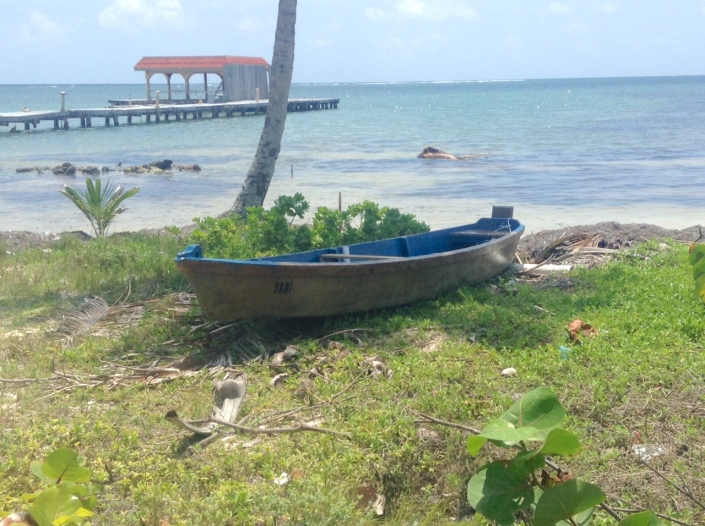 """On a recent walk up the coast I managed to take one """"traditional"""" photograph that would meet with the approval of the image-conscious Belize Tourism Board. This is it. Wait til you see what else I photographed."""