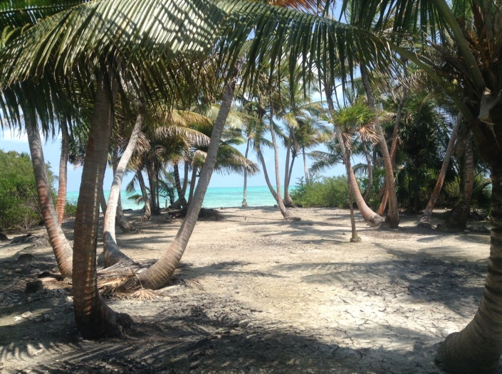 Walking around Blackadore Caye on my birthday, enjoying the splendor of a deserted island -- with 20 of my best friends!