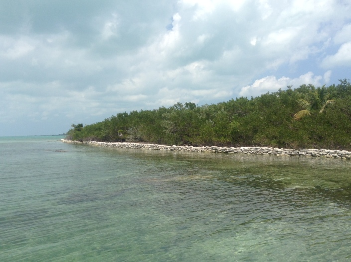 Dry-stacked limestone walls are being built around parts of Blackadore Caye to slow the erosion. After mangroves are planted and take hold, the walls can easily be removed.