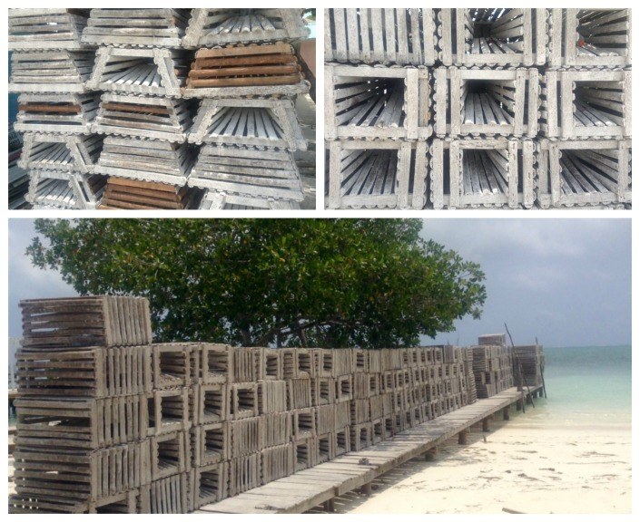 Caye Caulker is preparing for lobster season. Old traps are being refurbished. New ones are being built. It is a waterfront way of life largely unchanged by all the tourism and commerce growing around the fishermen.