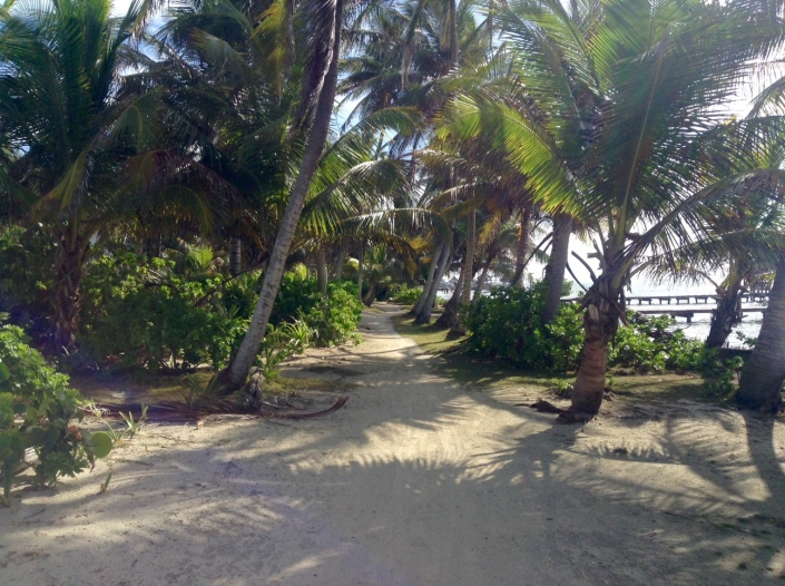 The following pictures are the public path through the residential section of Tres Cocos, more or less in order. You can see what a pleasant walk this can be!