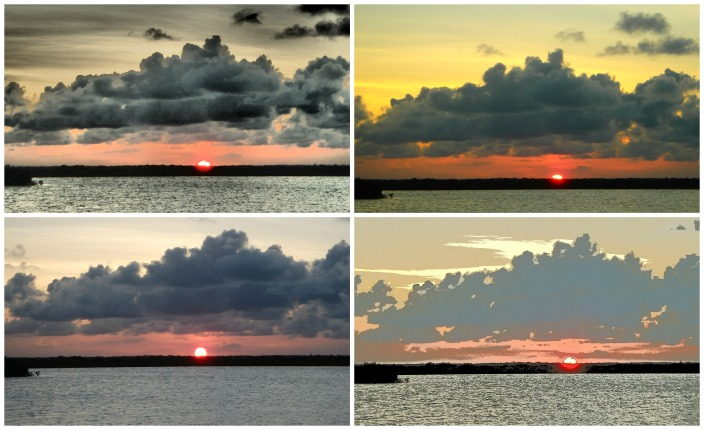Four versions of the same sunset, each shot with a different filter within seconds of each other. Just playing with my new toy, an Olympus camera.