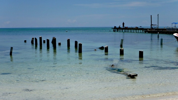 Pier just to the right is the rebuild of the famous Palapa Bar, slowly arising from its devastating destructioin.