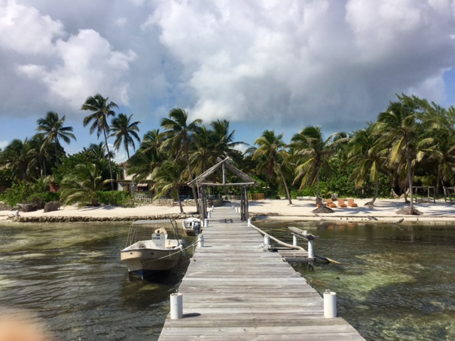 The view facing back toward the Ak'Bol Yoga Retreat on Ambergris Caye, Belize.