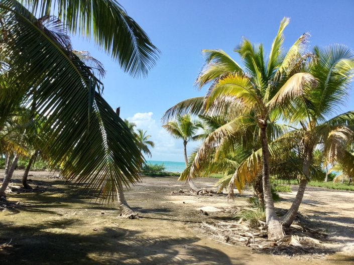 Blackadore Caye, Belize.