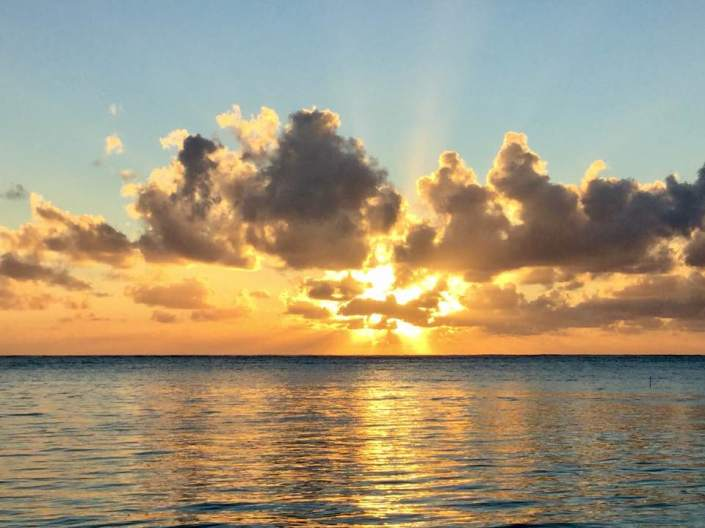A Poinsettia sunrise three days before Christmas in Ambergris Caye, off the coast of Belize. Good morning! May all your days start inside your heart like this!