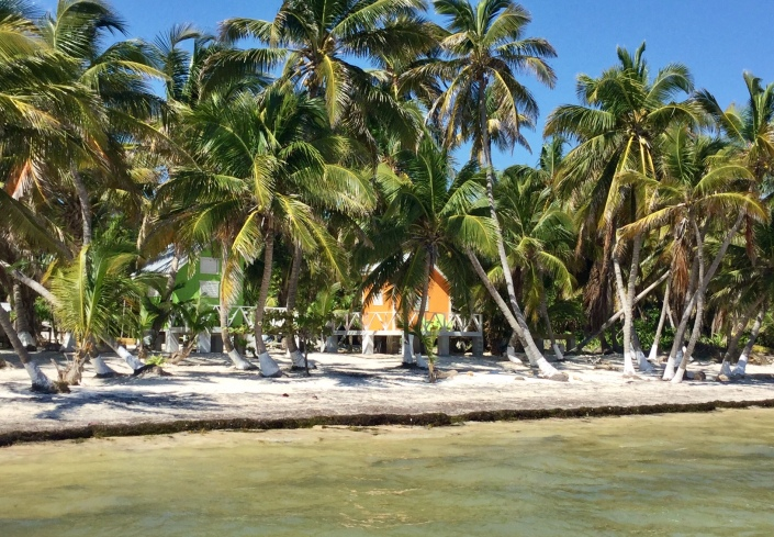 A view of cabanas belonging to the North Coconut Beach resort in north Ambergris Caye. They are positioning the resort as a chance for a real getaway -- isolated and rustic but not primitive.